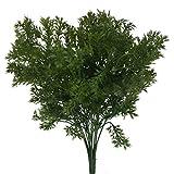 Best GÉNÉRIQUE Green Leaves - Plante Verte en Plastique Artificielle 6-Branches Persil Herbe Review