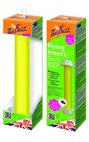 the-buzz-flying-insect-stick-small