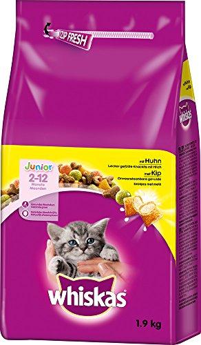 Whiskas Katzenfutter Trockenfutter Kitten für Junior Kätzchen mit Huhn (6 x 1,9kg)