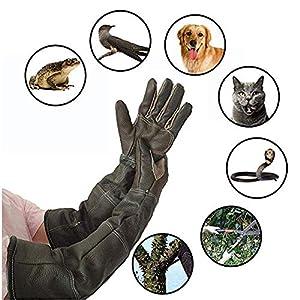 Manches longues gants de protection pour animaux Imperméabilisation des gants de manipulation des gants anti-morsure en cuir pour chien Chat pour chat Scratch Gestion des oiseaux Falcon Grabbing Repti