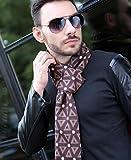 Hiver Fashion dot & Motif Triangle 30* * * * * * * * 180cm Soie cachemire chaud en laine d'agneau Mélange Gentleman Foulard, châle marron