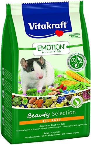 Vitakraft d'aliments pour Rat, légumes, datteln et...