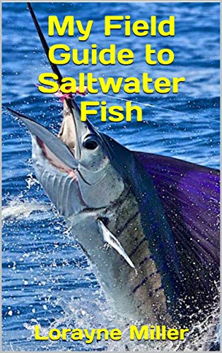 My Field Guide to Saltwater Fish (English Edition)