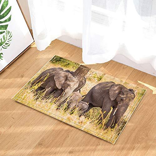 fuhuaxi Decoración de la Vida Silvestre, Familia de Elefantes Safari Caminando en...