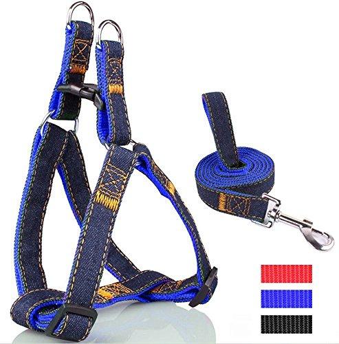 BXT® cani Jeans guinzaglio cani stoviglie per grandi e piccoli cane animali domestici regolabile con guinzaglio stabile 1,2m