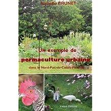 Un exemple de permaculture urbaine dans le Nord-Pas-de-Calais-Picardie