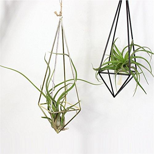 Plantas de aire soporte, 2piezas para colgar plantas de maceta cesta de accesorio de marco para plantas maceta sin tierra hueca de flores bronce soporte para Tillandsia Air pantalla, hierro, negro, Style_A