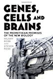 Genes, Cells and Brains: Bioscience's Promethean Promises by Hilary Rose, Steven Rose (2012)