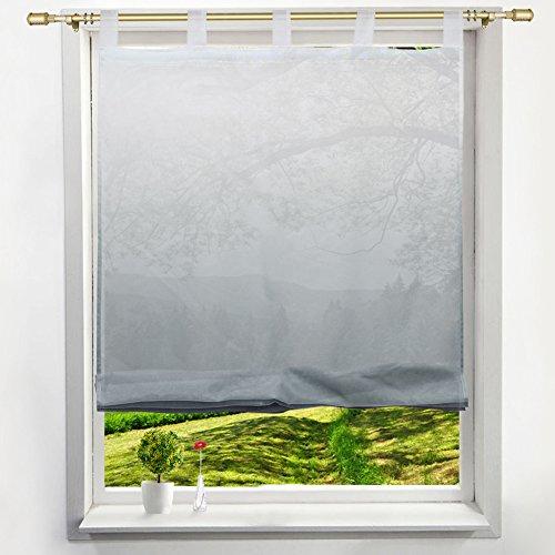 Preisvergleich Produktbild Voile Raffrollo mit Verlauf-Farben Muster Schlaufen Gardine Transparent Vorhang (BxH 120x140cm, grau)