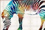 JRSART DIY Ölfarbe Von Number Kit - Bunte Leinwand Malerei Paintworks Bunte Wandkunst Bild Zeichnung Mit Pinsel Dekor Geschenke - Gemaltes Zebra 40X50Cm - Rahmenlos
