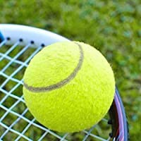 CamKpell Pelotas de Tenis Verdes Torneo Deportivo Diversión al Aire Libre Cricket Beach Dog Ideal para Practicar en la Playa Cricket Tennis Durable de Usar - Verde
