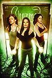 Charmed Season 9 Volume 1 (Charmed (Paperback))