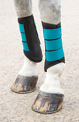 Shires Arma Neopren Sehnenschoner, Unisex-Erwachsene, blaugrün, Pony