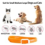 Flea and Tick Collar for All Kinds of Dogs and Cats - Anti-parasite collar - Pests Repellent for Pet - Added with… 9