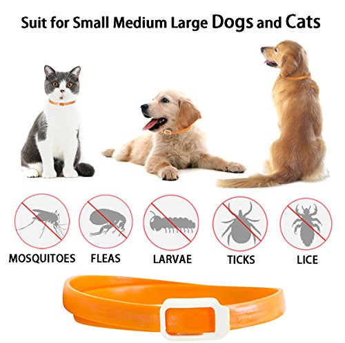 Flea and Tick Collar for All Kinds of Dogs and Cats - Anti-parasite collar - Pests Repellent for Pet - Added with… 2