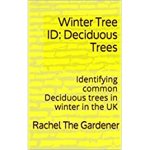 Winter Tree ID: Deciduous Trees: Identifying common deciduous trees in winter in the UK (Botany Basics Book 2)
