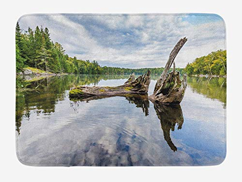 Red Cedar Tree Trunk (NasNew Driftwood Bath Mat, Remains of a White Cedar Tree Trunk in The Lake and The Sky Digital Image, Plush Bathroom Decor Mat with Non Slip Backing, 31.69 X 19.88 Inches, Green Pale Grey)