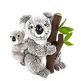 Teddys Rothenburg Kuscheltier Koala mit Baby sitzend grau 26 cm Plüschkoalabär