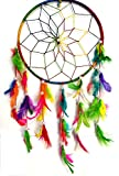 "Pooja Art Gallery Colorful 8"" Ring Dream Catcher for Sweet & Romantic Dream"