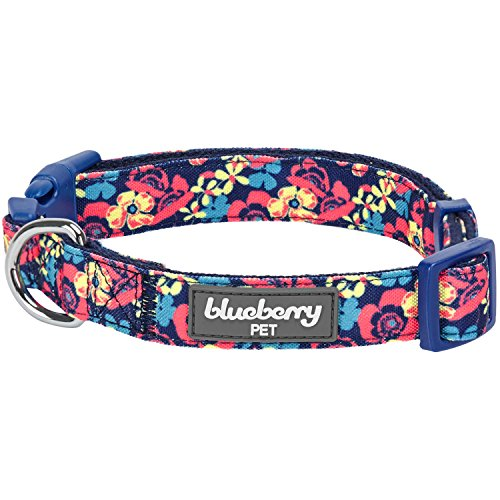 Collar para perro de Blueberry Pet