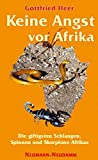 Keine Angst vor Afrika: Die giftigsten Schlangen, Spinnen und Skorpione Afrikas