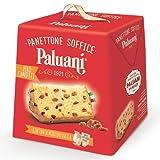 Paluani Panettone Soffice Zero Canditi 'Panettone Classico' nur mit Rosinen klassischer Panettone, 1000 g