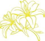 GRAZDesign 560021_50_022 Wandtattoo Blumen   Blumen-Tattoo Lilie für Wohnzimmer - Schlafzimmer - Küche   Blumenranken und Pflanzen an die Wand als Wand-Aufkleber (55x50cm//022 shellgelb)