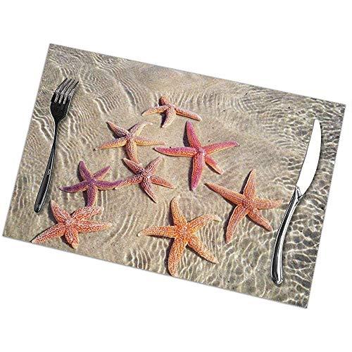 hgdfhfgd Tischsets Set mit 6 Ocean Starfish Esstisch-Tischsets Leicht zu reinigende, strapazierfähige, rutschfeste Küchentischsets