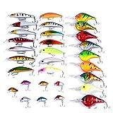 Aorace 30pcs esche da pesca Kit Misto tra cui ciprinidi Popper Crank esche con ganci per acqua salata acqua dolce trota Bass Salmon Fishing