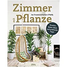 Zimmer mit Pflanze: Kreative Wohn-Ideen & praktische Tipps