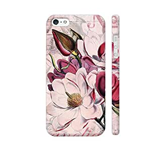 Colorpur iPhone 5 / 5s Cover - Vintage Magnolia Flower Illustration Printed Back Case