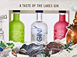 The Lakes Gin & Gin Liqueur Mixed Miniature Gift Pack - Lake District Gin Gift (3 x 5cl)