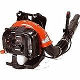 ECHO PB770 - Souffleur thermique dorsal - 63,3 cc - 2,85 kW - 10,8 kg -...