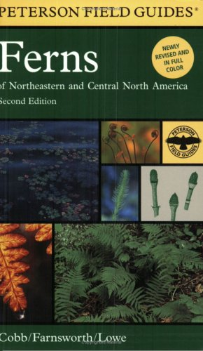 Ferns: Of Northeastern and Central North America (Peterson Field Guide)