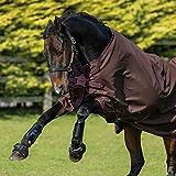 Horseware Amigo Hero ACY Lite 50g Disc Front Regendecke Chocolate/Choc (145)