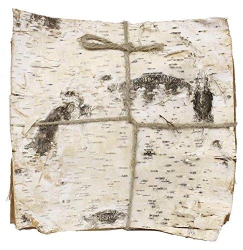 Import Natur Weiß Birke Rinde. Bundle of 6(29,8cm Quadratisch Birch Bark) - Weiße Birke Natürlichen