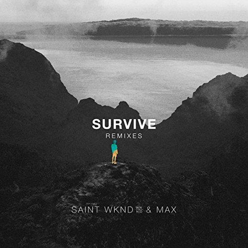 Survive (Sonny Fodera Remix) [...