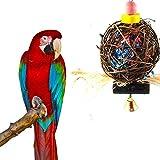 CAVN piccolo/medio pappagallo/uccello da masticare giocattolo, naturale Hand-Made da masticare appeso toyfor uccello pappagallo africano Budge Ara parrocchetto cockatiel Lovebird gabbia giocattolo