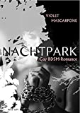 Nachtpark: Gay-BDSM-Romance