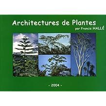 Architecture de plantes