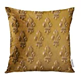 jiilwkie Throw Pillow Cover Lis Fleur De Lys on The Doors of Napoleon's Tomb in Paris Gold Craftsmanship Decorative Pillow Case Home Decor Square 18x18 inches Pillowcase