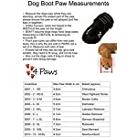4Paws Dog Boot Active Paw Protectors - (1 x Pair - 2 boots) Reflective and Robust with rubber grip sole and breathable… 16