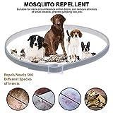 Flöhe Hundehalsband als Symbol gegen Mückenabwehr gegen Halsbänder ätherisches Öl verstellbar für Hunde Katzen