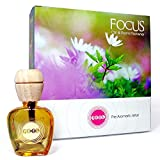 Feelgood Car Freshners and Perfumes Focus