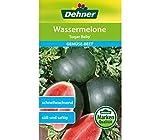 Dehner Gemüse-Saatgut, Wassermelone,