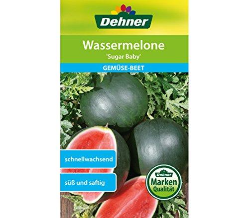 """Dehner Gemüse-Saatgut, Wassermelone, """"Sugar Baby"""", 5er Pack (5 x 4 g)"""