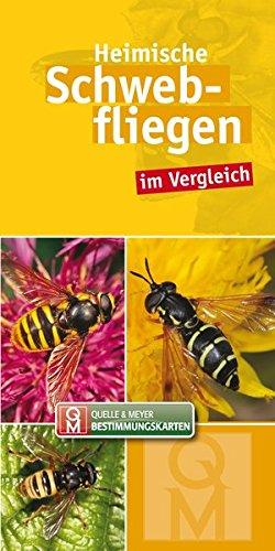 Heimische Schwebfliegen im Vergleich: 10er-Set (Quelle & Meyer Bestimmungskarten)