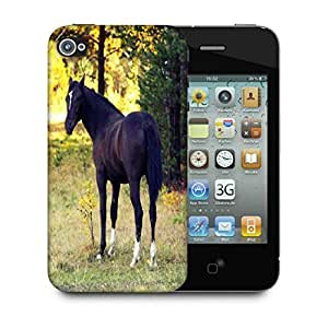 Snoogg Dark Black Horse Designer Protective Phone Back Case Cover For Apple Iphone 4