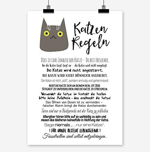 Din A4 Kunstdruck ungerahmt S/ü/ße Katze Katzen Katzenk/öpfe Comic Portrait Illustration Bunt Druck Poster Bild