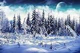 HHYSPA Malen nach Zahlen für Erwachsene und Kinder DIY Winterlandschaft Leinwand mit Pinsel Weihnachtsdekor Dekorationen Geschenke Rahmenlos 40X50CM